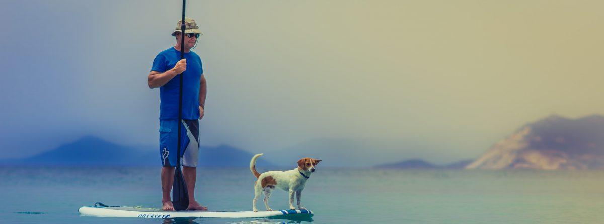 Oceans Of Pets